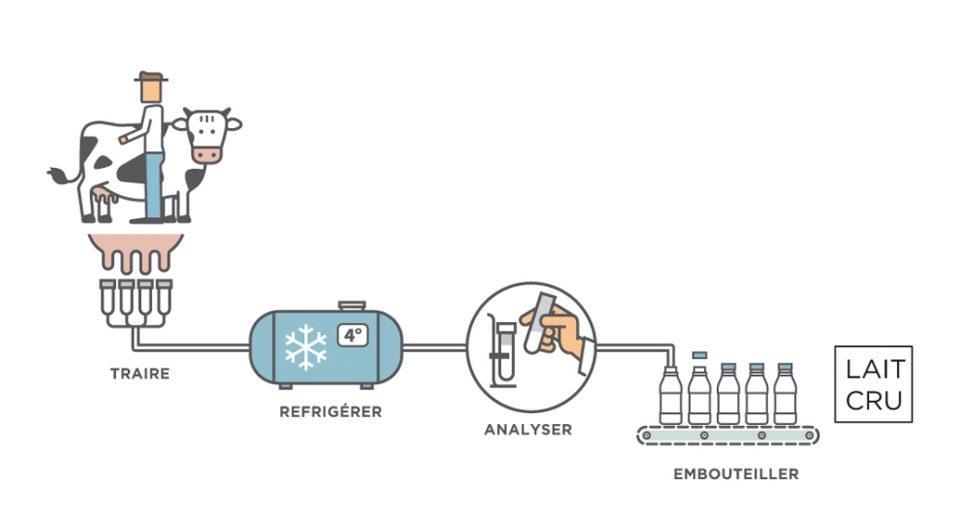 Processus de transformation du lait cru