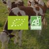 Que veut dire bio pour produit laitier?