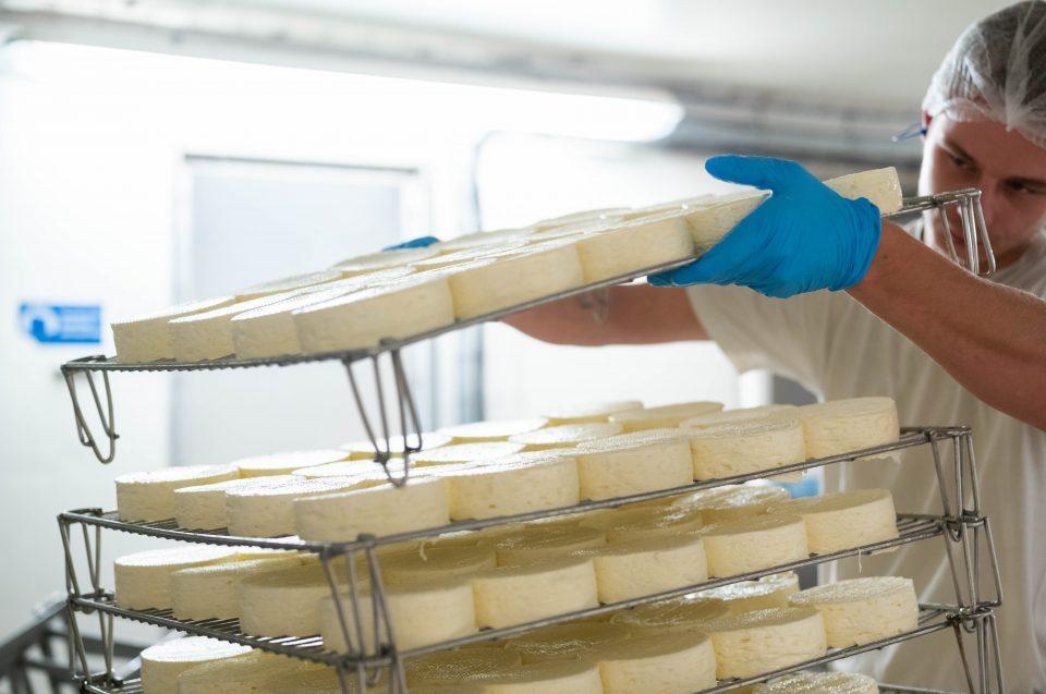 Fromage : entre savoir-faire traditionnel et moderne