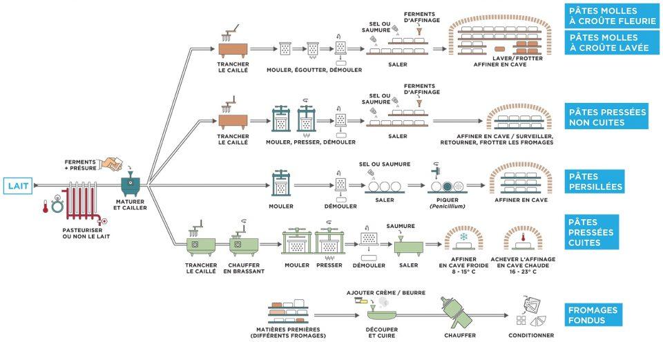 Processus de transformation des fromages
