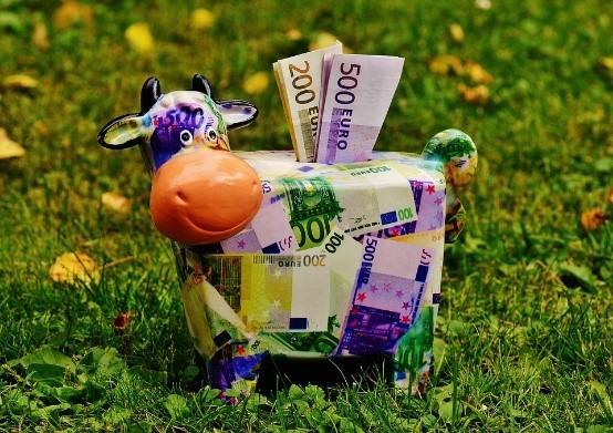 Vache en billet