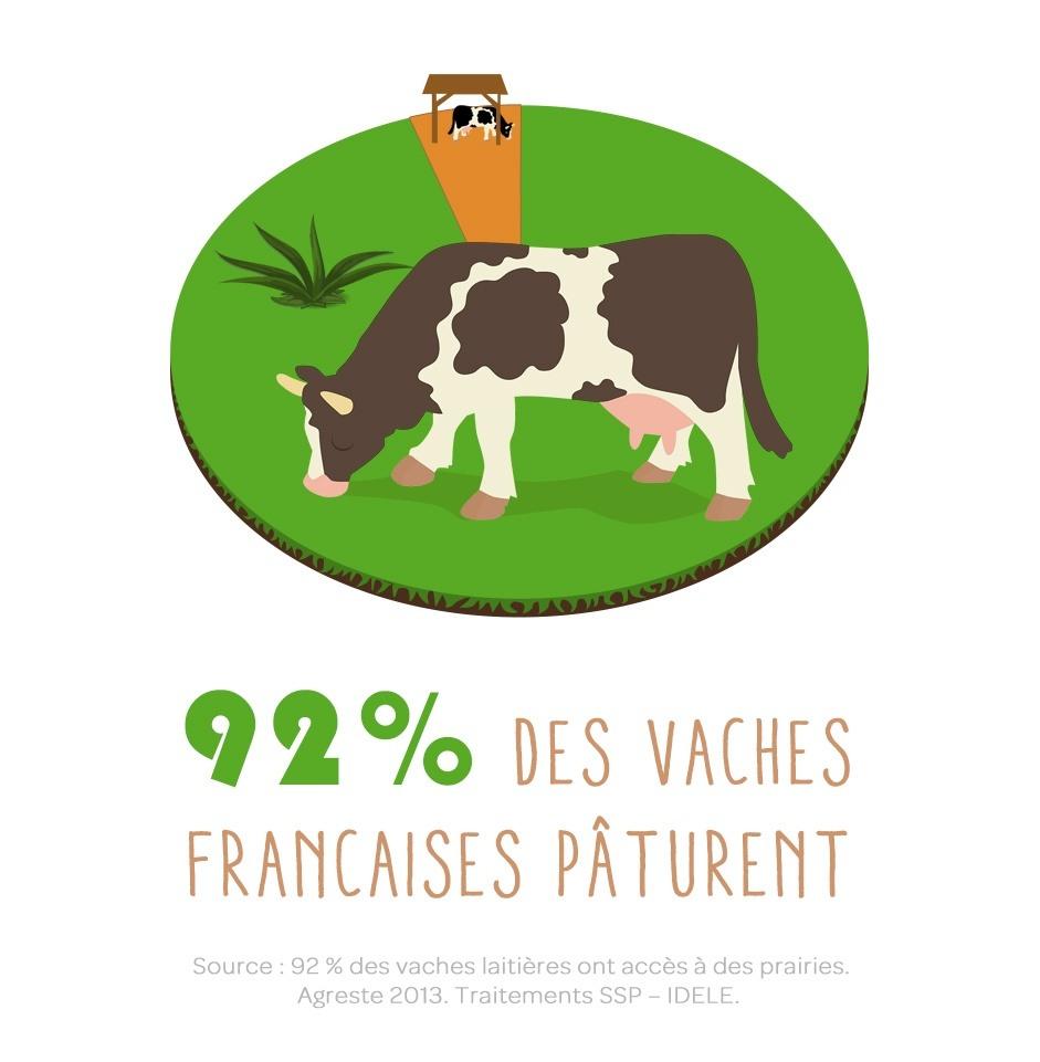 92% des vaches laitières françaises sortent pâturer