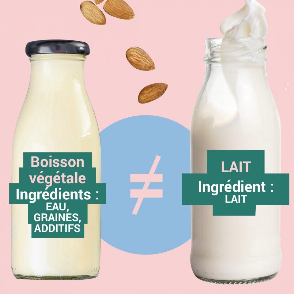 """Quelle est la différence entre le lait de vache et les """"laits"""" végétaux ?"""