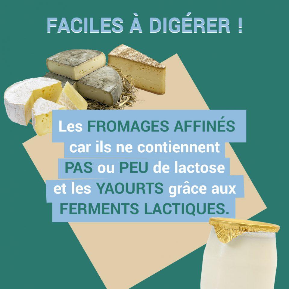 fromages affinés et yaourts sont faciles à digérer