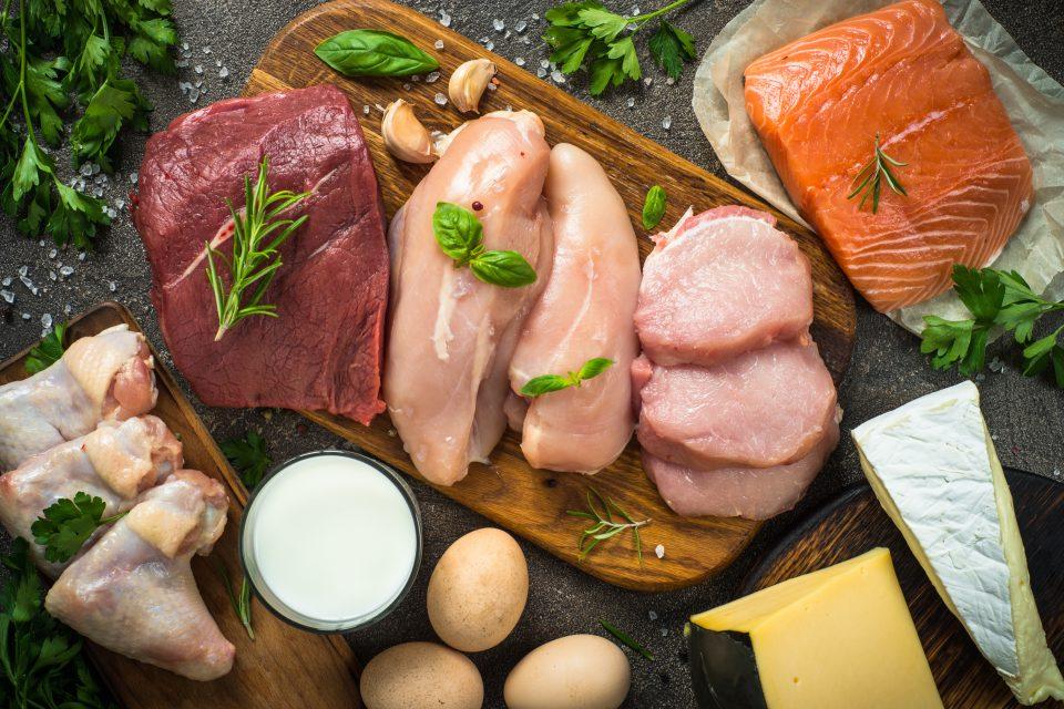 Faites le plein de protéines !